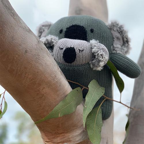 Koko & Lala Koala
