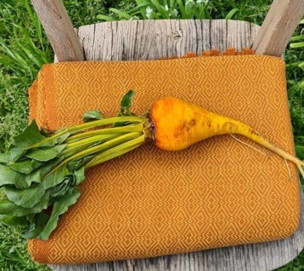 Golden Beetroot Blanket